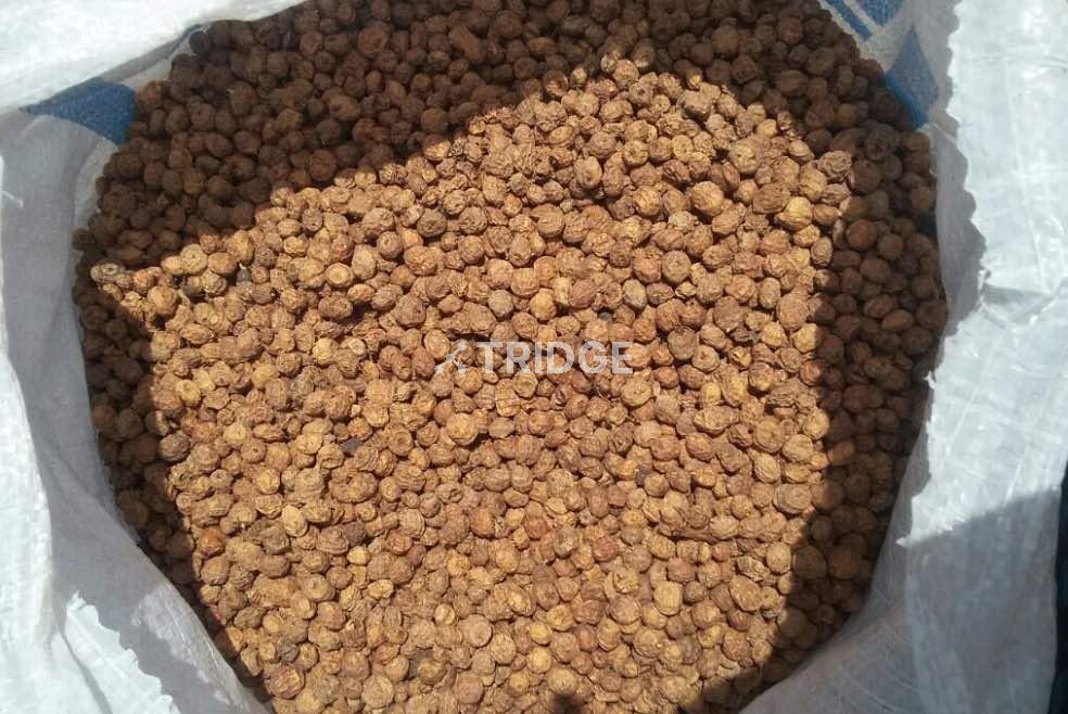 Premium Quality Tigernuts (Chufas)