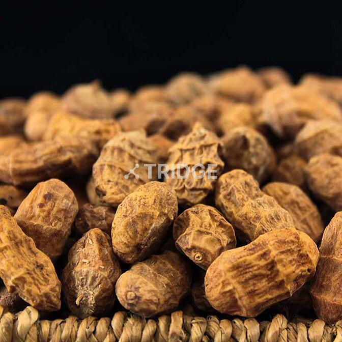 Premium Quality Tigernuts (Chufas) from West African Farmers