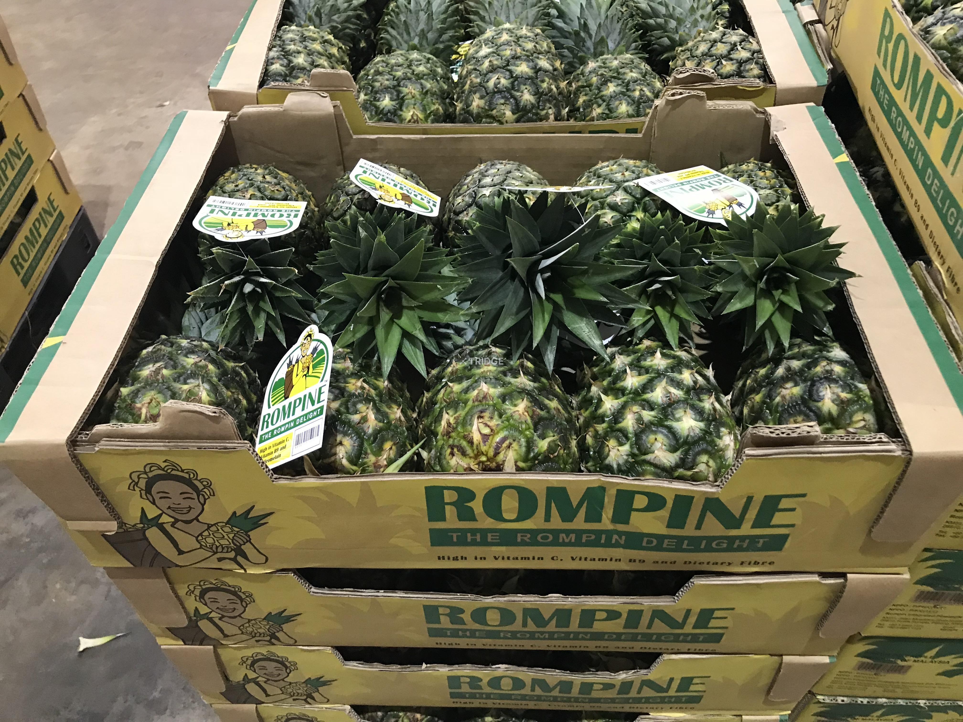 ROMPINE MD2 Pineapple