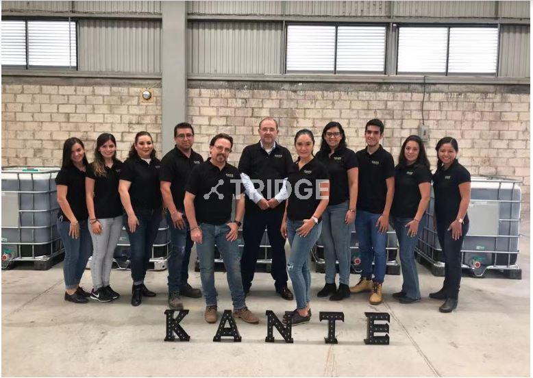 Kante team