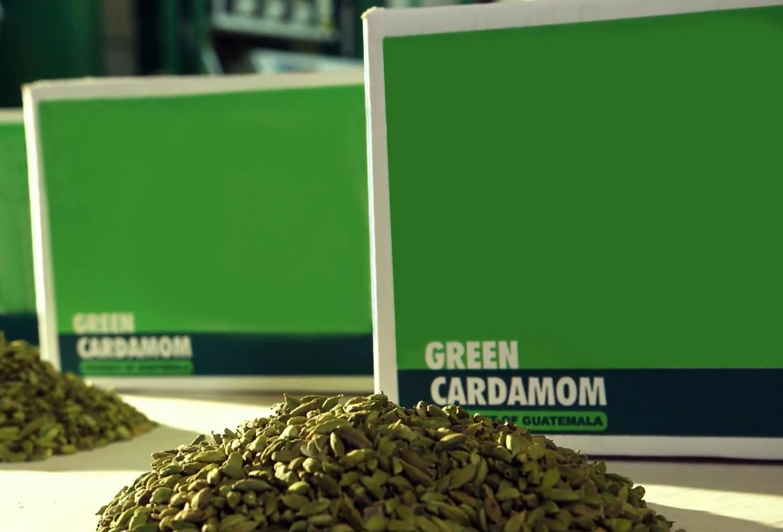 Guatemala Whole Green Cardamom - 9_copy_Edit.jpg