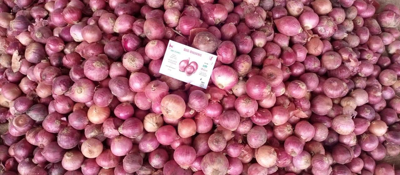 Pakistan Fresh Onion - WhatsApp_Image_2021-07-09_at_4.55.13_PM_1.jpeg