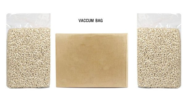 Vietnam Cashew Nut Kernel - Cashew_in_Vaccum_bag.jpg