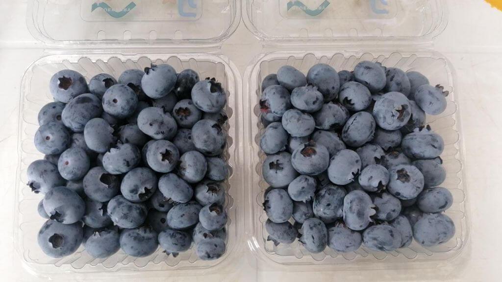 Peru Fresh Blueberry - Copy_of_WhatsApp_Image_2021-07-14_at_17.01.46_1.jpeg