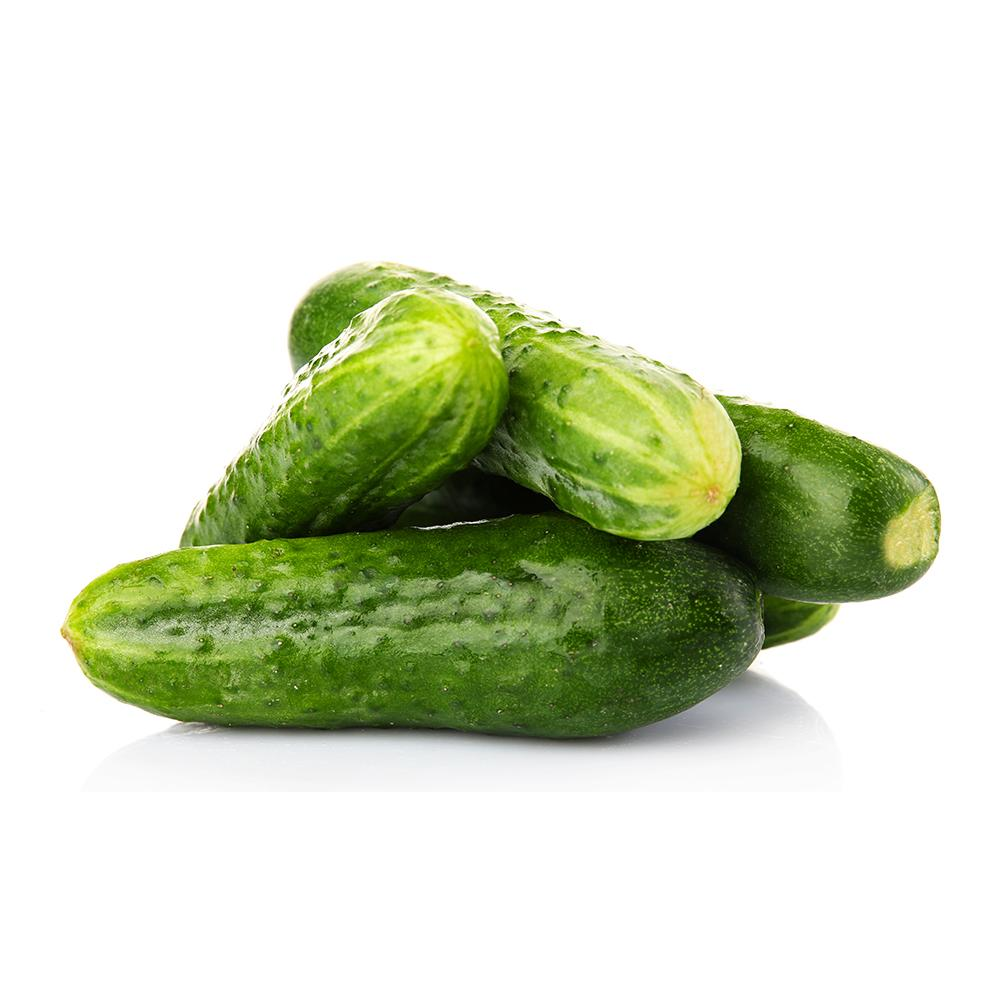Market Intelligence of Cucumber