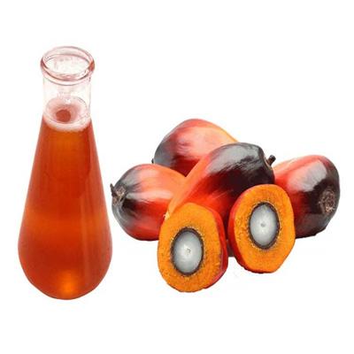 Market Intelligence of Crude Palm Oil (CPO)
