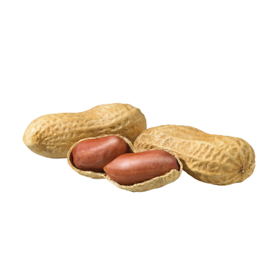 Market intelligence of Peanut in the South Africa