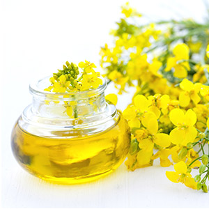 Market intelligence of Rapeseed Oil in the China