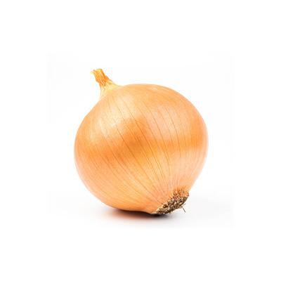 Market Intelligence of Onion in Bangladesh