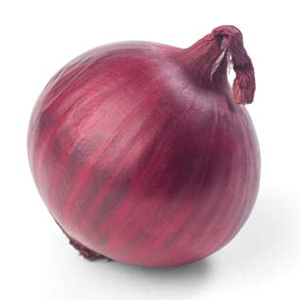 Onion suppliers, prices, and global market information - Tridge