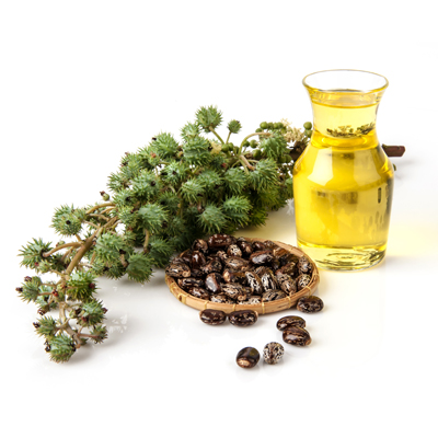 Castor Oil suppliers, wholesale prices, and global market