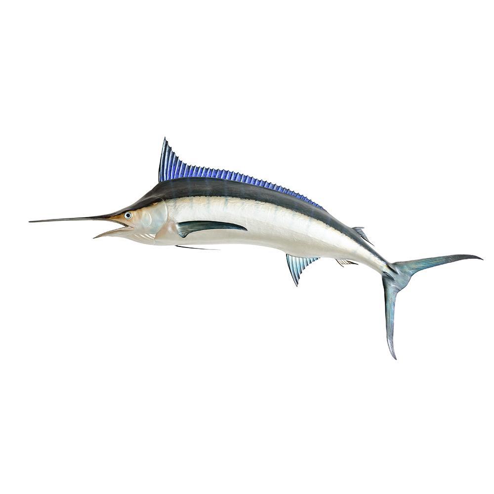 Market Intelligence of Swordfish in South Sudan