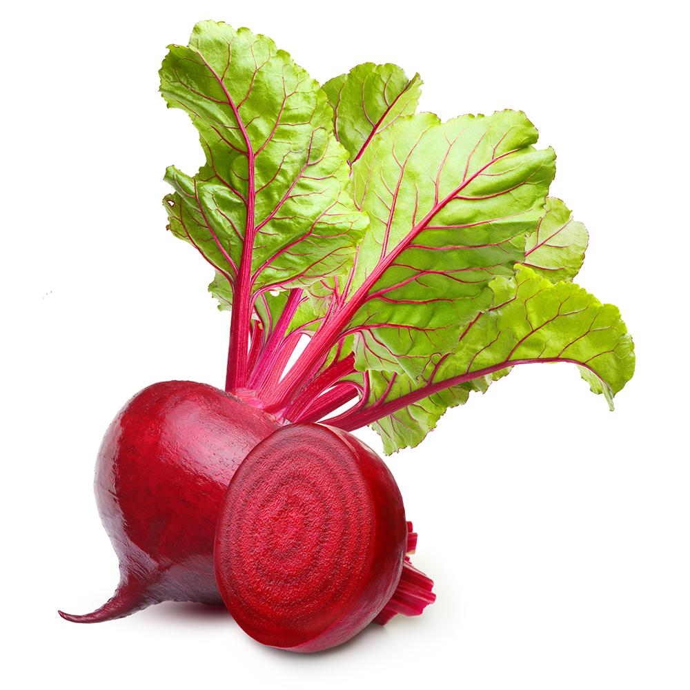 Market Intelligence of Beetroot