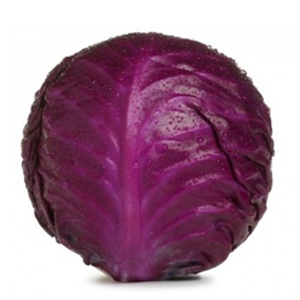 Market Intelligence of Red Cabbage in Hungary
