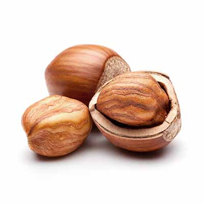 Hazelnut global import and top importing countries - Tridge
