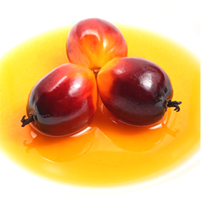 Market intelligence of Palm Oil in the India
