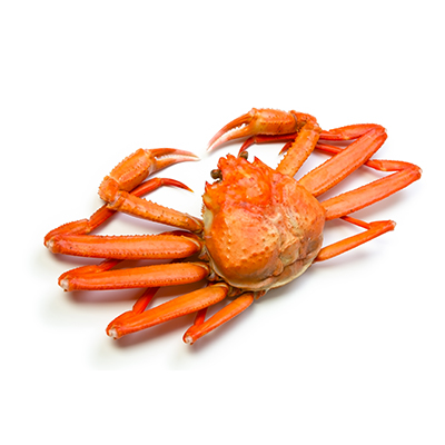 Red Snow Crab suppliers, wholesale prices, and global market