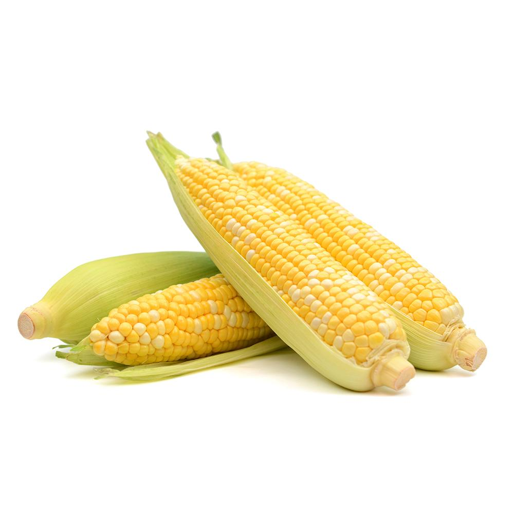 Market intelligence of Sweet Corn in the United States