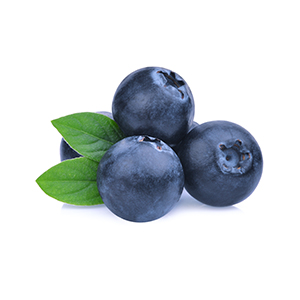 Market intelligence of Bilberry in the Turkey