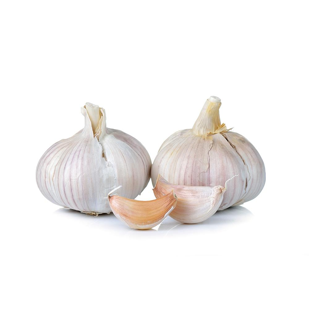 Market Intelligence of Garlic