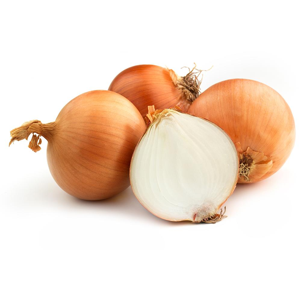 Market Intelligence of Onion